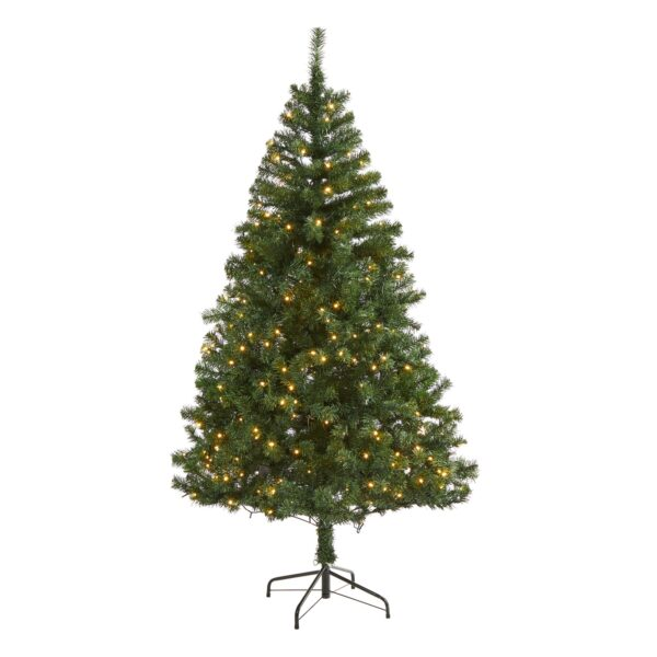 6' Northern Tip Pine Artificial Christmas Tree With 250 LEDs, 680 Bendable Branches