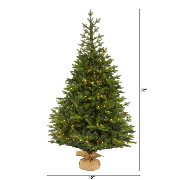 6' Fraser Fir Artificial Christmas Tree With 300 LEDs