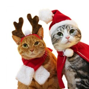 Cats And Dogs Christmas Costumes   Holiday Gifts   All For Xmas