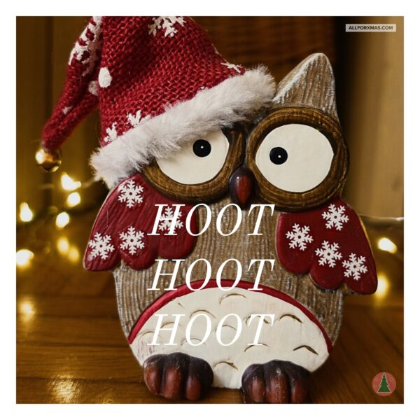 Hoot Hoot Hoot Christmas Card | Greeting Cards | All For Xmas